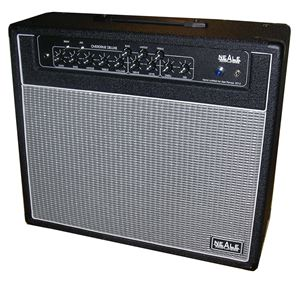 Overdrive deluxe guitar amp 12